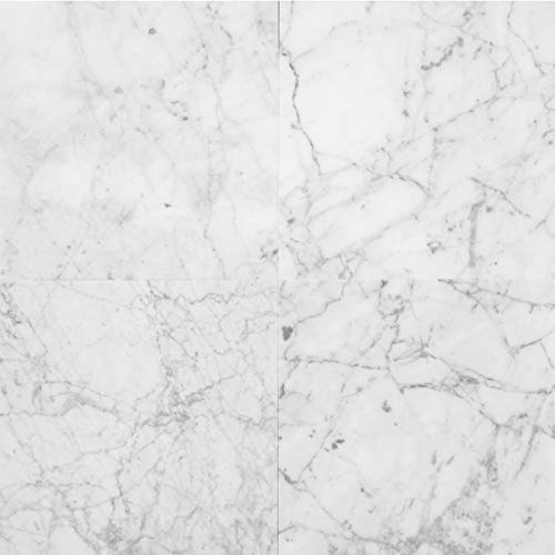 Natural Stone Collection Carrara Gioia 12 in. x 12 in. Polished Marble Floor and Wall Tile (10 sq. ft. / case)