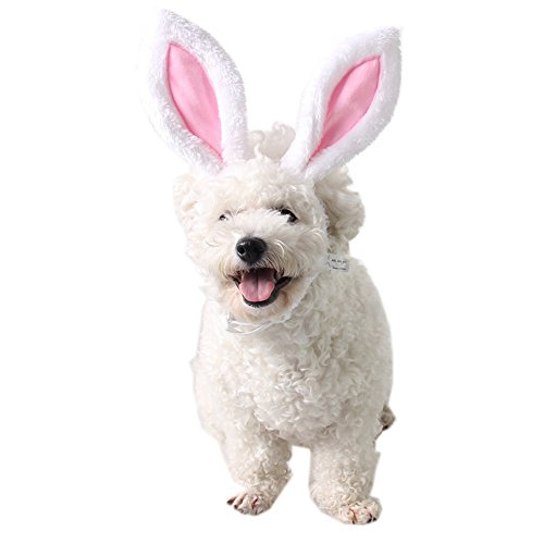 FLAdorepet Halloween Bunny Ears for Your Cats & Small Dogs Party Costume Accessory Headwear (M(Head Girth 12