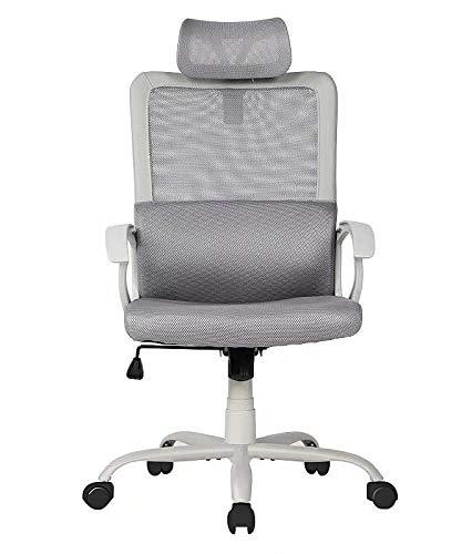 Sumgdesk Office Chair, Mesh Office Chair, Ergonomic Office Desk Chair Computer Task Chair with Adjustable Headrest