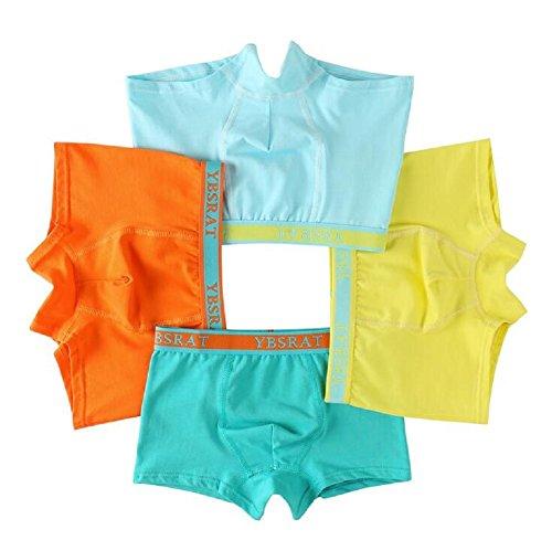 Goodkids Little Big Boys' Organic Breathable Trim Cotton Boxer Briefs Underwear Panties (M/4-6 Years)