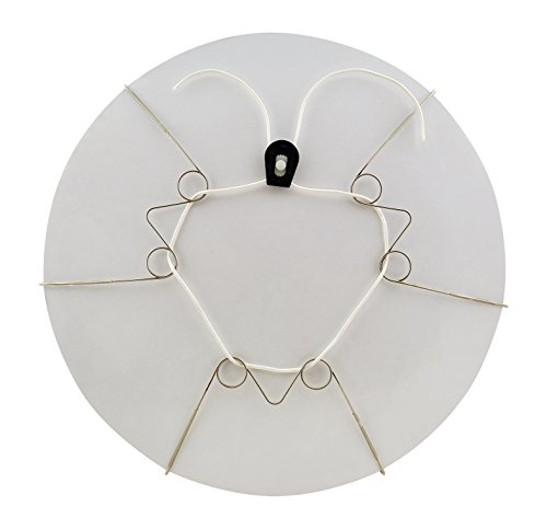 Display Buddie Large Adjustable Plate Holder Decorative Plate Wall Hanger | Plate Hangers for The Wall | Vase Hanger, Bowl Hanger, and More! Hang & Display Decorative Plates on Your Wall | Size L (Wall Tray Hangers)