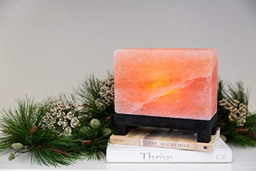 From Himalaya Mountains Salt Lamp Hand Carved Modern
