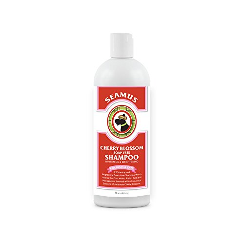 Buy scented dog shampoo