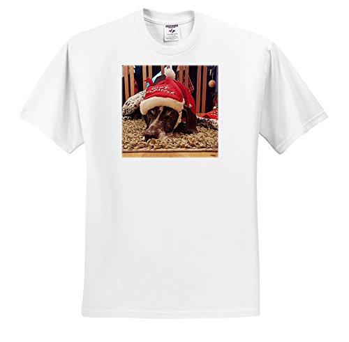 Sandy Mertens Christmas Animals - Santa Hat On a German Shorthaired Pointer Dog, Sad Looking Dog - T-Shirts - White Infant Lap-Shoulder Tee (18M) (TS_269511_68) (Hat White Pointer)