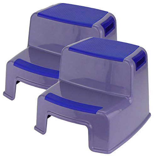 MINEL Two Step Stool, (2 Pack) (Grey/Blue) by MINEL