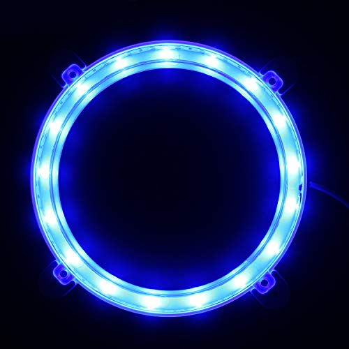 Led Lights In Bags
