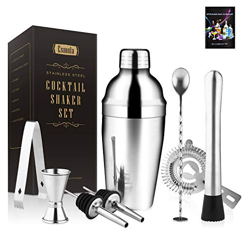Cocktail Shaker Set 8 Piece, 18oz Stainless Steel Bartender Kit Professional Martini Mixing Bartending Kit Combination, Home Stylish Bar Tool Set with Cocktail Recipes Booklet