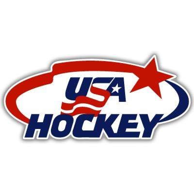 USA National Hockey Team Vynil Car Sticker Decal - Select Size