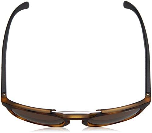Hombre para Havana Marrón Gafas de Arnette Matte Sol Woodward zRXqzSI
