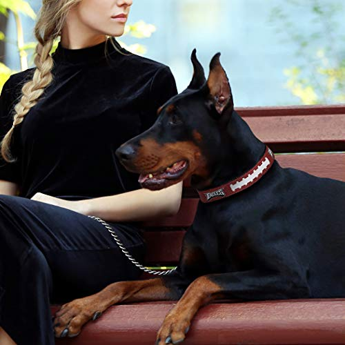 Pets First NFL Philadelphia Eagles Premium Dog Collar, Limited Edition, Size Medium. Best & Strongest Heavy-Duty Dog Collar!