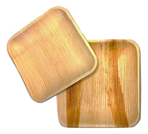 Disposable palm leaf plates | Eco-Friendly Sturdy & Heavy Duty Party Plates | Biodegradable & Compostable | 10