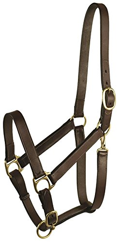 GATSBY LEATHER COMPANY 282960 stable Halter with Snap Havanna Brown, (Gatsby Leather Halter)