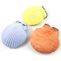 Qin ChenChen Big Shell Bird Perches Solid and Secure Chewing Grinding Stones