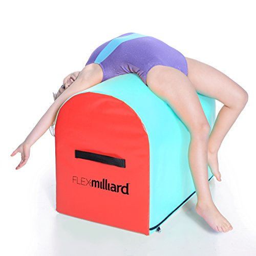 Milliard Gymnastics Mailbox Tumbling Aid Trainer, Spotting Equipment, 24x16x19.5 inches Blue/Red - Air Team Trainer