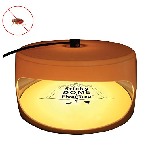 Traps Flea Insect Trap Sticky Dome Bed Bug Trap Pad 2 Glue Discs Odorless  Non-poisonous and Natural Flea Killer Trap Pad, Family, Children and Pets
