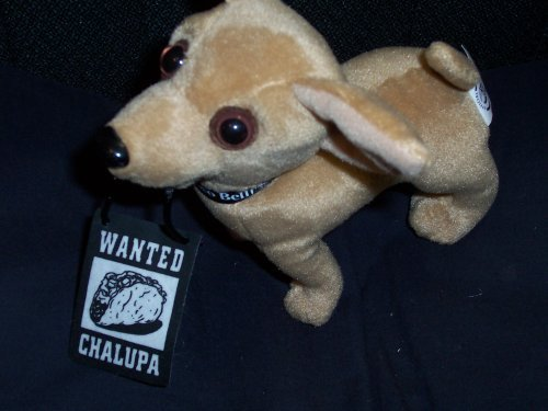 Taco Bell Talking Chihuahua ~ Chalupa Wanted Poster Chihuahua Dog by Taco Bell