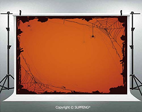 Photography Backdrops Grunge Halloween Composition Scary Framework with Insects Abstract Cobweb 3D Backdrops for Photography Backdrop Photo Background Studio Prop -