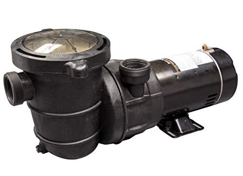Blue Torrent Pumps 1.5 HP Maxi Pump – Dual Port/Standard Plug – 2 Speed
