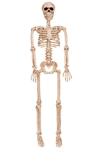 Crazy Bonez Posable Skeleton Decoration, 36