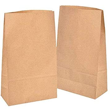 50 piezas Bolsas de Papel Regalo 18 x 30 x 8 cm - Bolsa Biodegradable Regalos Comunión para Invitados o para Guardar Comida, Semillas Flores, Dulces, ...