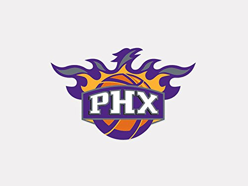 NBA Phoenix Suns Perfect Cut Color Decal, 4