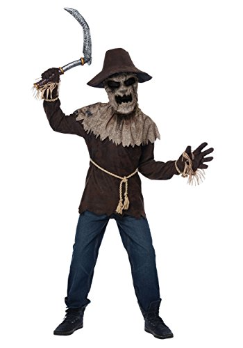 California Costumes ' Wicked Scarecrow Costume Small (6-8) -