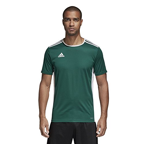 (adidas Men's Soccer Entrada 18 Jersey, Collegiate Green/White, Small)