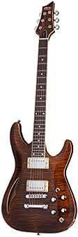 schecter acoustic guitars