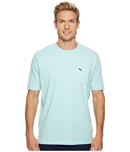 (Tommy Bahama Men's Bali Skyline T-Shirt (Large, Aqua Mist))