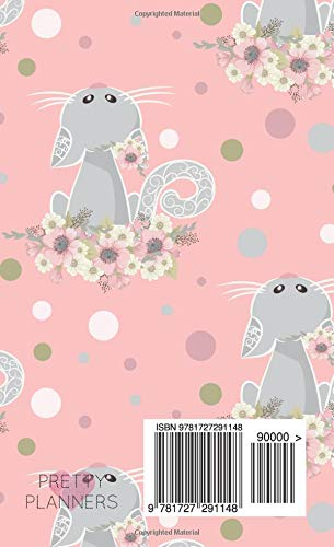 2019-2020: Two-Year Monthly Pocket Planner   Mini 4 x 6.5 ...