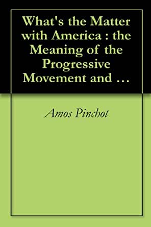 an overview of the new progressive party in america Politics in the 1920s depression and the new the irish‐american, roman catholic governor of new lafollette's revival of the progressive party.