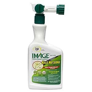 Imagen Mata nutsedge listo para spray