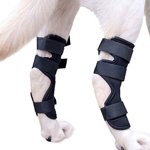 Pikaon Dog Canine Rear Leg Hock Compression Brace Pair Adjustable Joint Wrap Duo