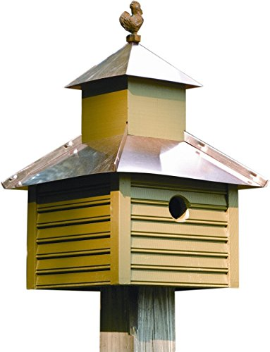 Heartwood 093B Rusty Rooster Decorative Bird House ()