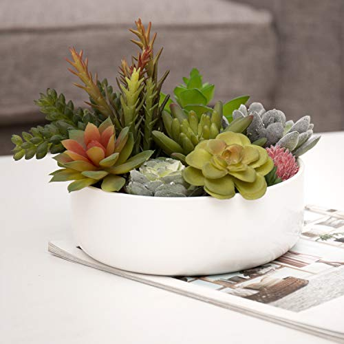 MyGift Assorted Faux Succulent Plants in 6-Inch Round White Ceramic Pot
