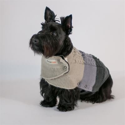 ThunderSweater 2 in 1 Combo Pack! Comes with Thundershirt (Small)