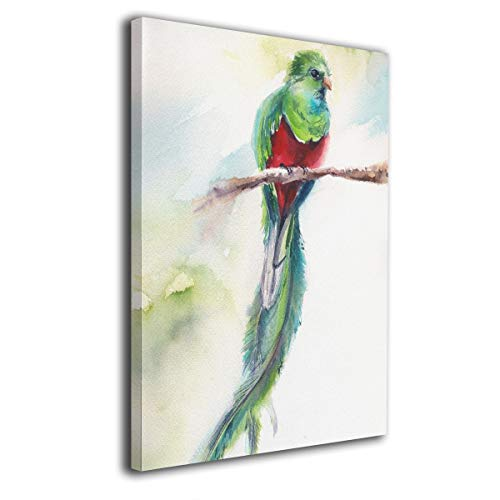 Okoart Canvas Wall Art Prints Quetzal Birds Green Red for sale  Delivered anywhere in Canada