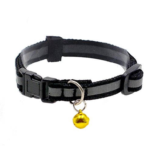 Xtra Small Dog Collar - 6
