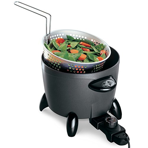 Buy deep fryer for home use