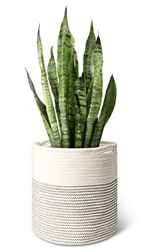 Mkono Cotton Rope Plant Basket Modern Indoor Planter Up to 11 Inch Pot Woven Storage Organizer with Handles Home Decor, 12″ x 12″