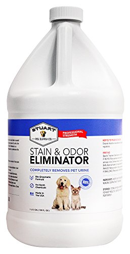 Removal Stain Feces (Professional Strength Stain & Odor Eliminator-Enzyme-Powered Pet Odor & Stain Remover for Dog & Cats Urine #1 Fresh Clean Scent 100% Money Back Guarantee (Gallon))