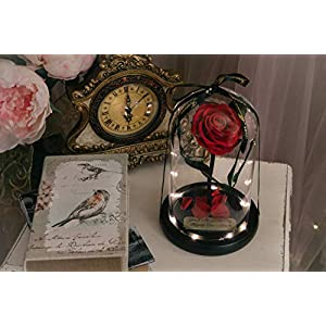 Rose in Glass Dome with Metal Engraved Plaque inspired by Beauty and the Beast Rose, Real Preserved Red Rose in Large Glass Dome with LED lights 4