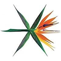 Vol 4 (The War) (Korean Version)