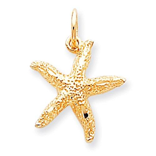 10 k or-Charm étoile de mer que supérieure-Grade JewelryWeb or 9 carats