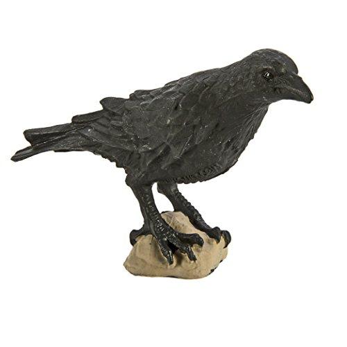 (Safari Wings of the World: Raven)