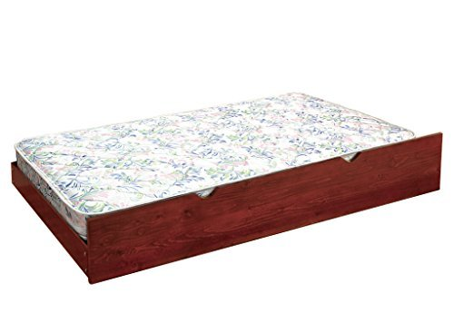 Furniture of America Quilted 6-Inch Trundle Mattress Twin [並行輸入品] B07BFXW2BM