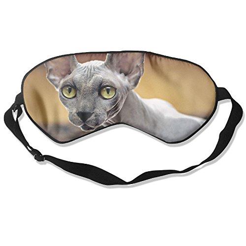 Sphynx Cat Skin Care - 1