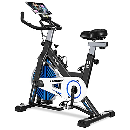 LABGREY Stationary Bikes, Quiet Belt Drive Exercise Bike, Indoor Cycling Bike For Home Gym Workout with Screen, iPad Holder and Comfy Seat