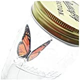 Animated Monarch Butterfly in Jar Sound Activated