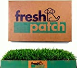 Fresh Patch Disposable Dog Potty with Real Grass - As Seen on Shark...